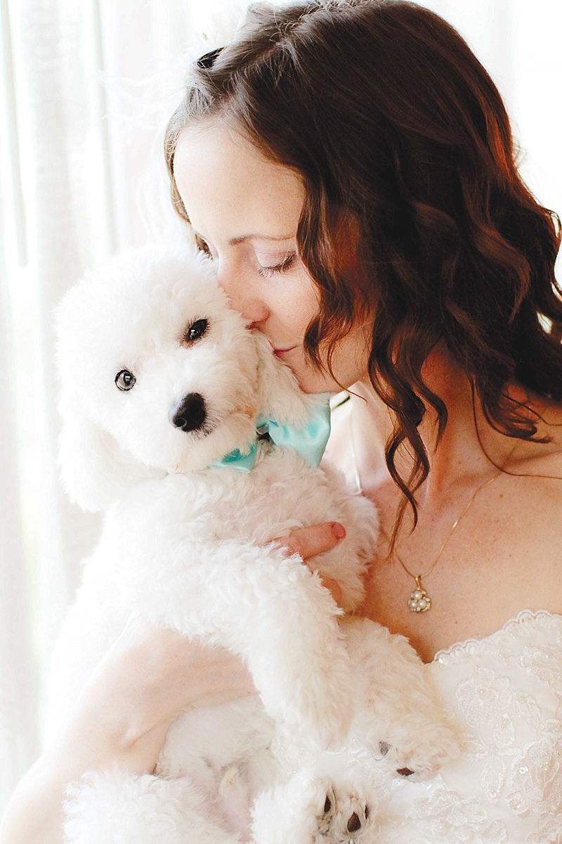 Puppy Love How to Include Your Dog on the Wedding Day