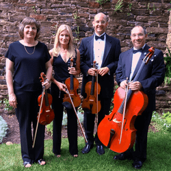 Belle Arte String Quartet